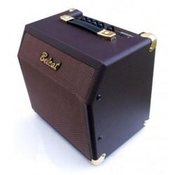 Amplificador Acústica y...