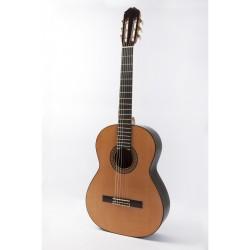 Raimundo 145 Flamenco Palo...