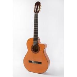 Raimundo 646E Flamenco